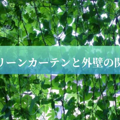 グリーンカーテンと外壁の関係